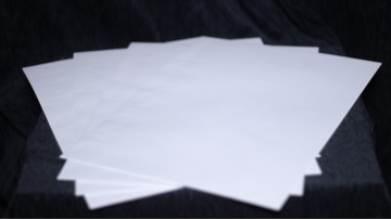 Thermal paper for Lynx Prediction (x100)